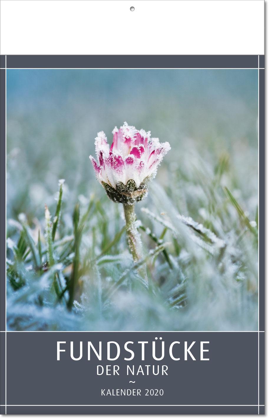 "Bildkalender ""Fundstücke der Natur"" 2019"