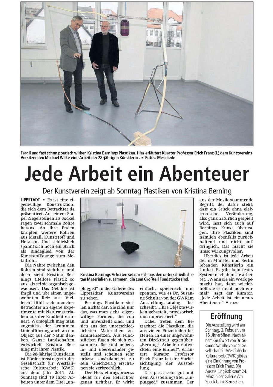 Der Patriot 31.01.2013