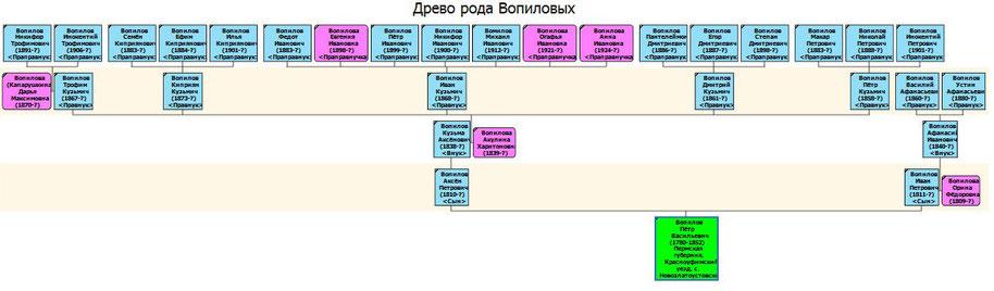 Древо рода Вопиловых д. Екатерининской с 1852 г. в 4-х поколениях.