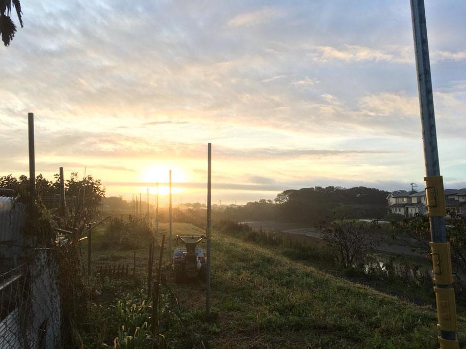 館山パイオニアファームで朝陽を浴びました。6時集合であります!