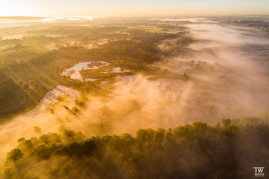 Licht trifft Nebel (B1455)