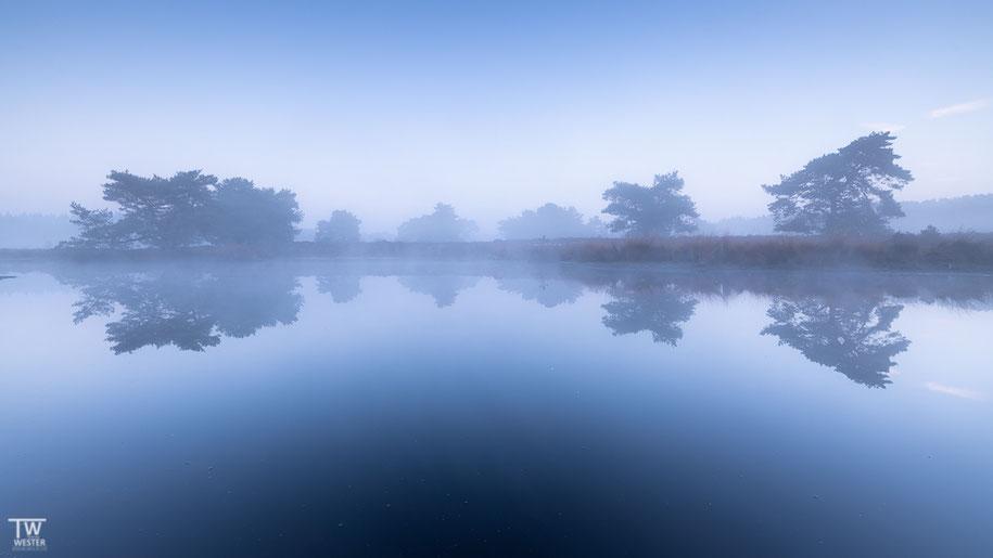 Blaue Nebelstunde (B1467)