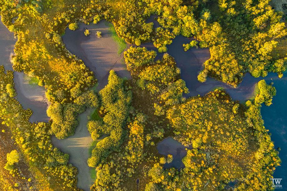 Auch noch spät im Jahr dominierten an vielen Stellen grüne und gelbe Töne (B1444)