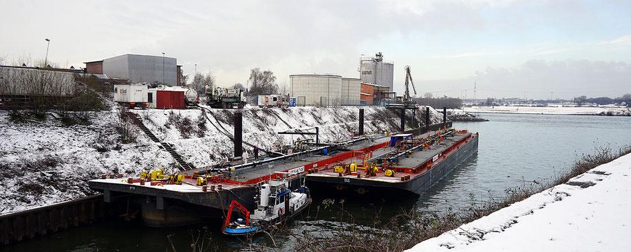 Lebensraum A Hafen im Winter, während der Vegetationsruhe, Aufnahme-Datum: 31.01.2019. Im Kultushafen werden ganzjährig Reinigungen der Tanks von Tank-Leichtern durchgeführt.
