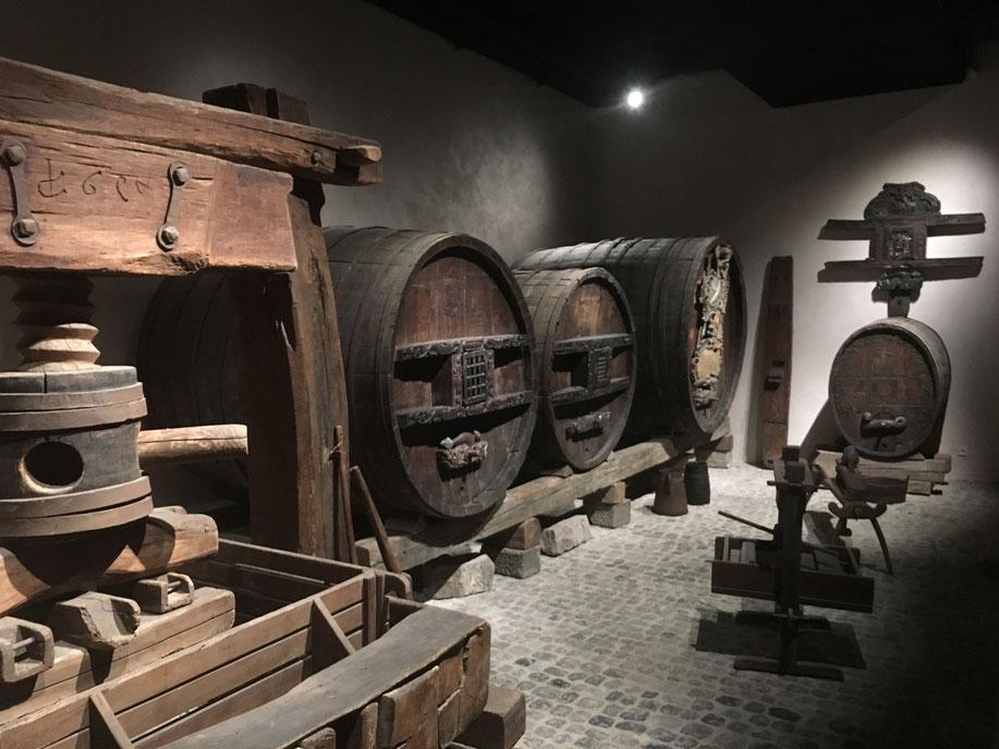 La cave historique du Musée Unterlinden à Colmar