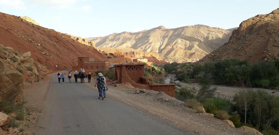 Retour de croquis sur le vif.La mule transportent les vivres et les sacs.