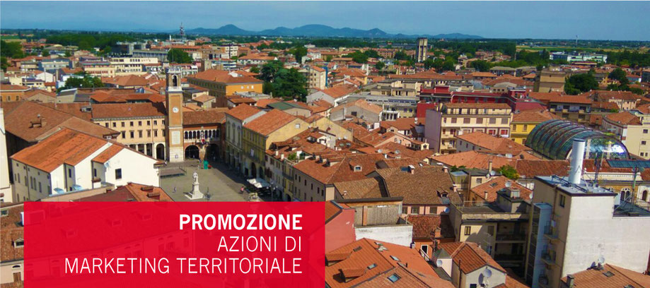 infocard città, rovigo, marketing