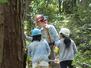 トンカチ館 木登り 体験
