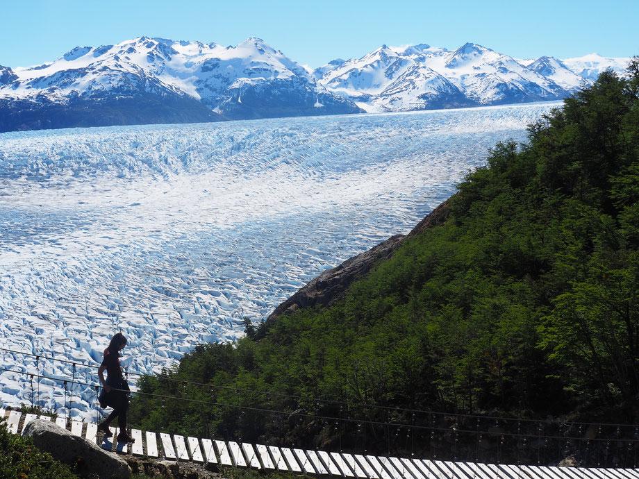 Wunderschön: 3 Hängebrücken führen entlang des Grey Gletschers auf dem O-Trek in Torres del Paine