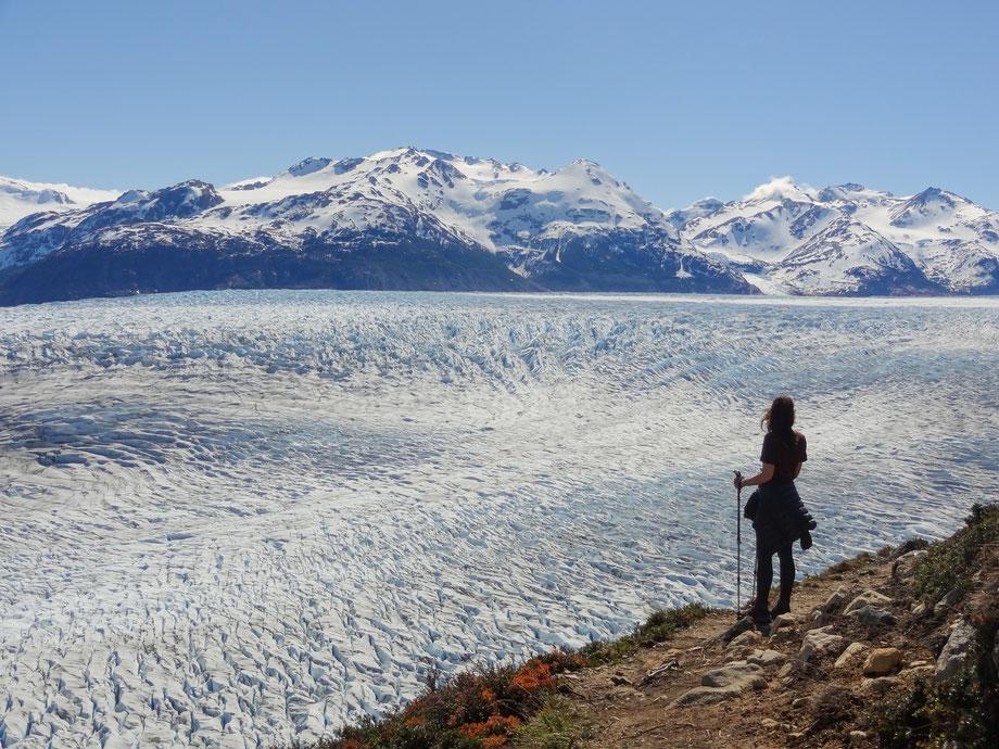 Der Blick über den Glacier Grey im Nationalpark Torres del Paine in Patagonien