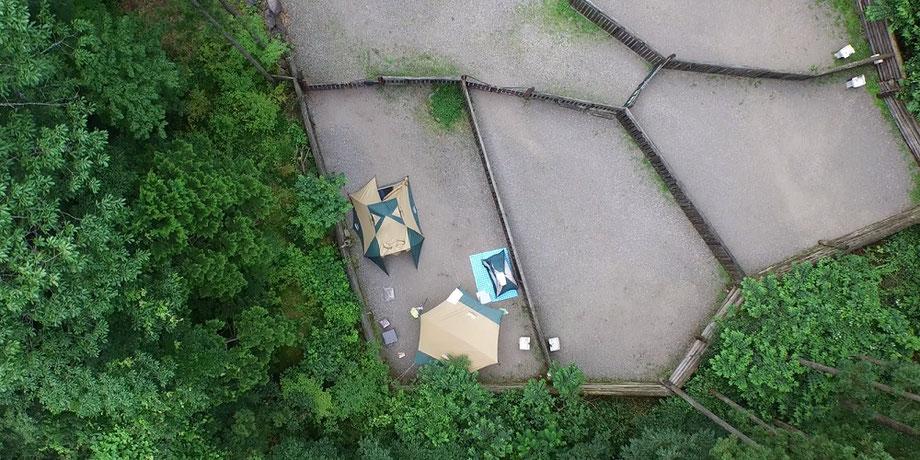 オーキャン宝島ドックランサイト