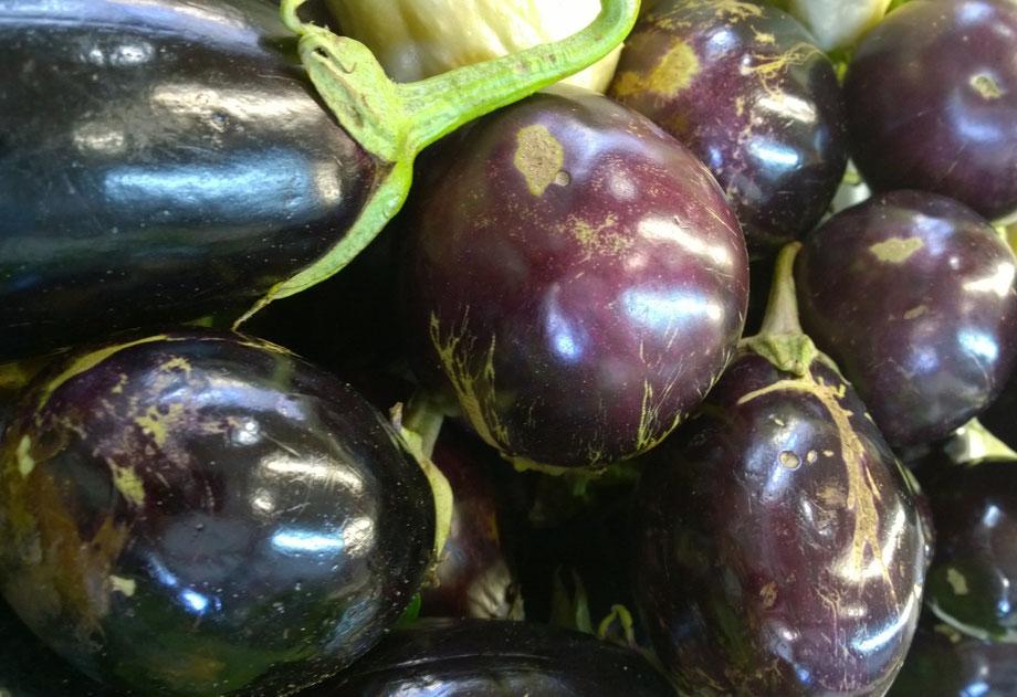 Aubergine,Berinjela,Eggplant,Gemüse,Legumes,Vegetables,Martins-Kulinarium,Carvoeiro,Algarve,Portugal