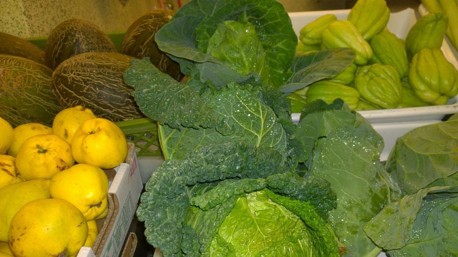 Gemüse,Legumes,Vegetables,vom Markt der Algarve,Portugal,Martins-Kulinarium,Carvoeiro