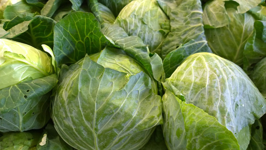 Kohl,Couve,Cabbage,Gemüse,Legumes,Vegetables,Martins-Kulinarium,Carvoeiro,Algarve,Portugal
