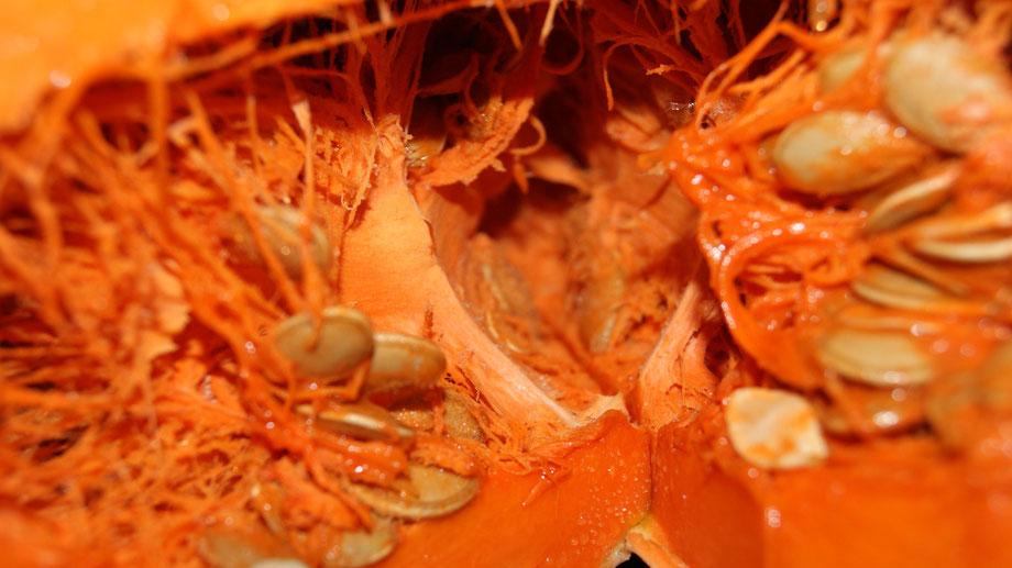 Kürbis,Abóbora,Pumpkin,Gemüse,Legumes,Vegetables,Martins-Kulinarium,Carvoeiro,Algarve,Portugal