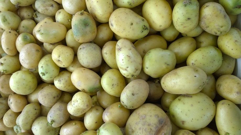 Kartoffeln,Batatas,Potatoes,Gemüse,Legumes,Vegetables,Martins-Kulinarium,Carvoeiro,Algarve,Portugal
