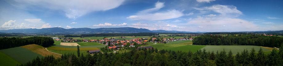 Ausblick beim Waldwandern im solothurner Wasseramt im schweizer Mittelland