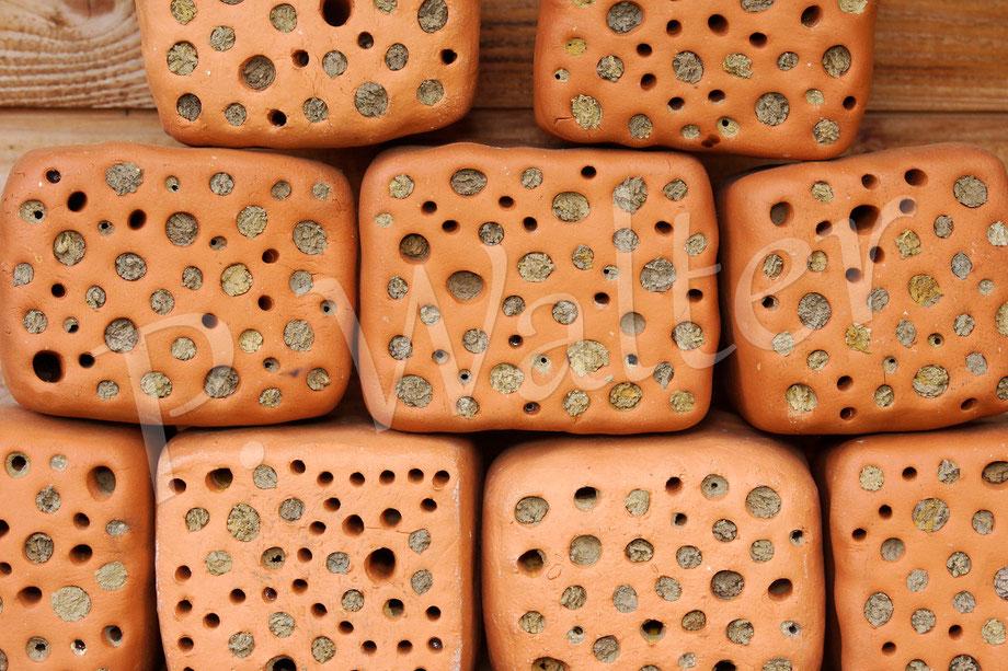 Bild: Tonsteine, Wildbienen, Mauerbienen, Nistgangverschluss