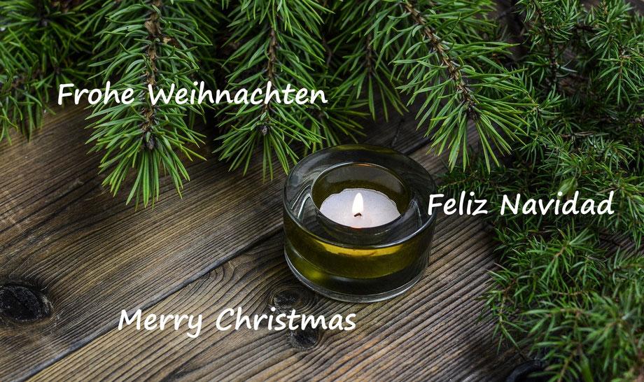Ich wünsche allen Lesern und Freunden ein frohes und geruhsames Weihnachtsfest!