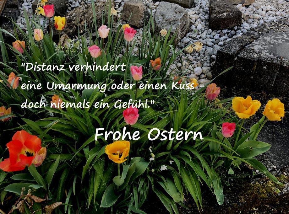 Frank Oster Autor - Frohe Oster Distanz verhindert einen Umarmung oder einen Kuss - doch niemals ein Gefühl