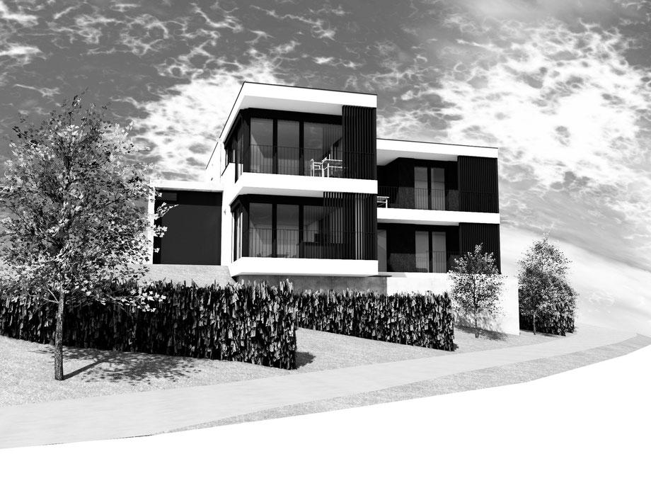 Einfamilienhaus Schneider-Schmiedehausen, Emsreute 2012