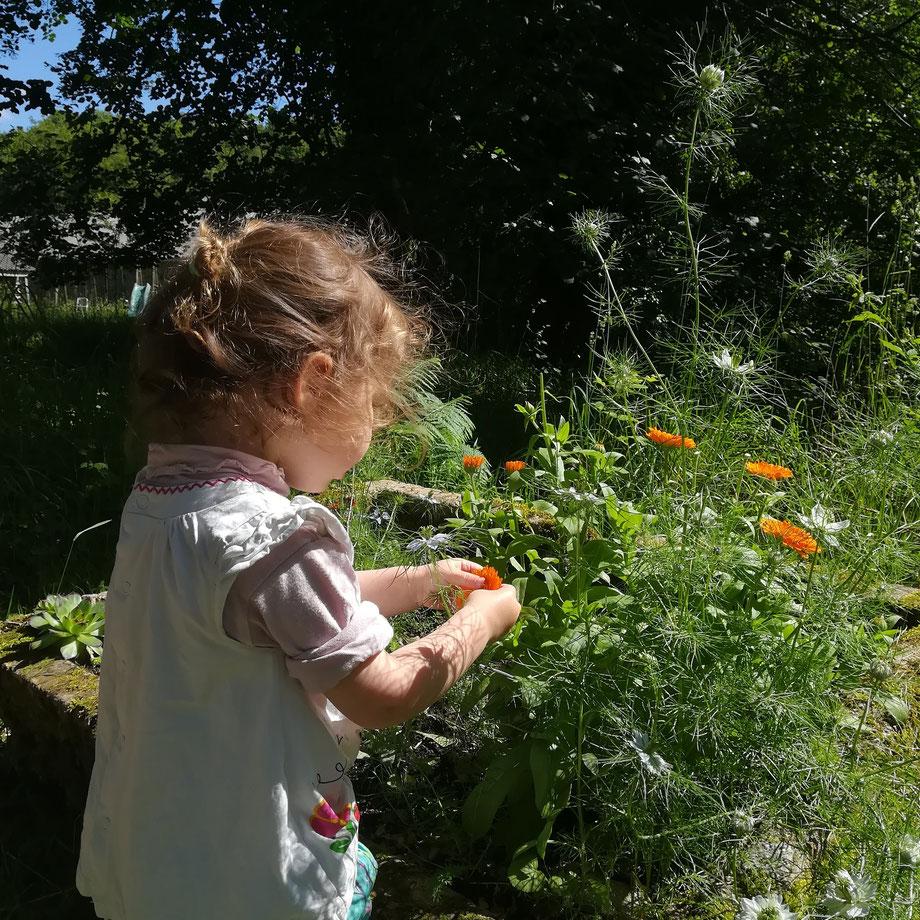 S'occuper des fleurs avec la plus belle de mon jardin!