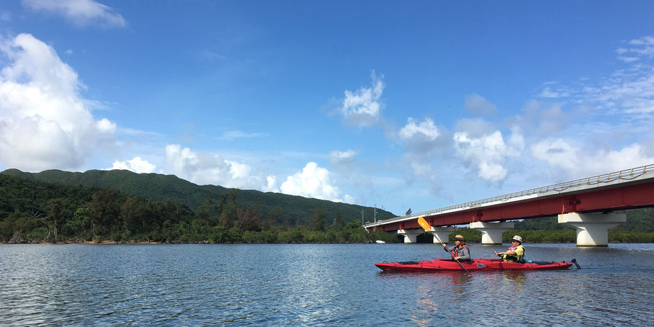 西表島・ガイドにおまかせツアー【マングローブカヌー】