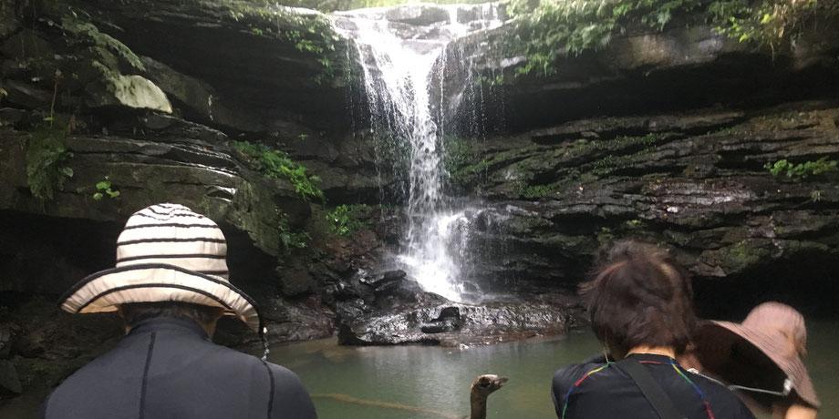 ジャングル/クーラ滝