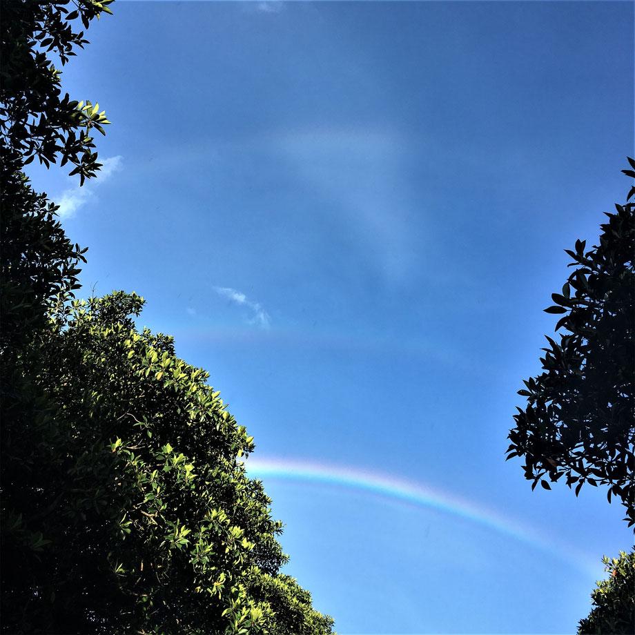 西表島/三重の虹
