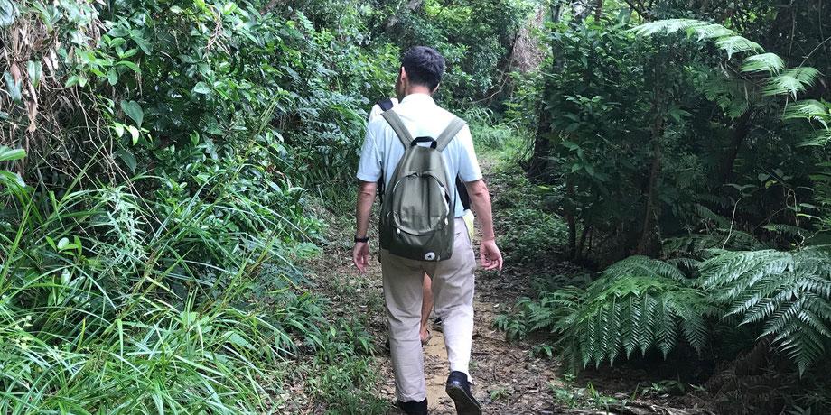西表島・早朝カヌー/カヤックツアー【サガリバナ&滝遊び】おまけトレッキング