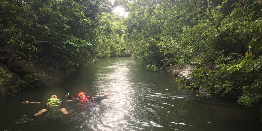 大見謝川/自然体験