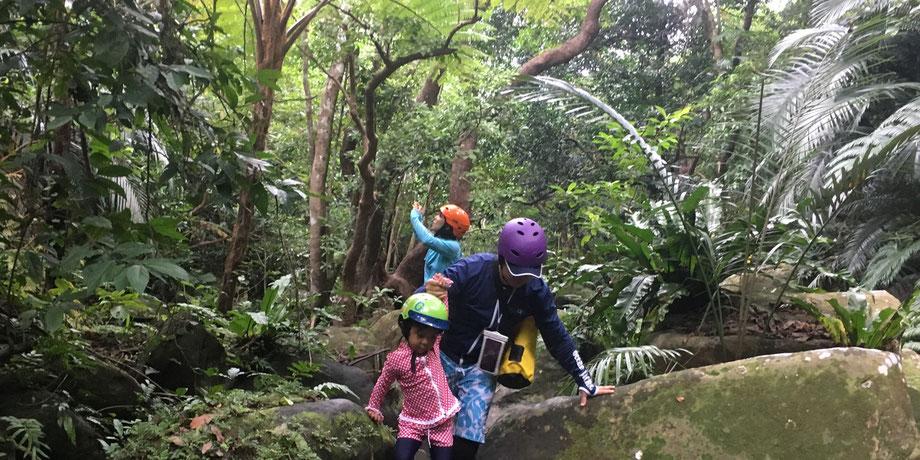 西表島・ガイドにおまかせツアー【沢・滝遊び&マングローブカヌーforファミリー】
