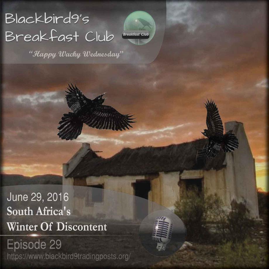 South Africa's Winter Of Discontent - Blackbird9