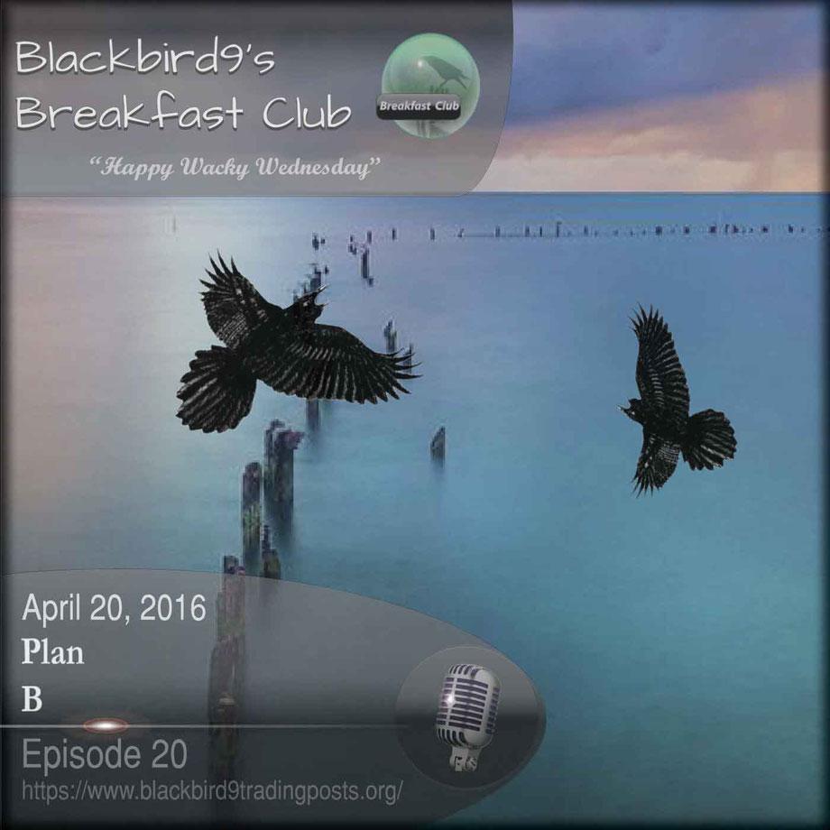 Plan B - Blackbird9