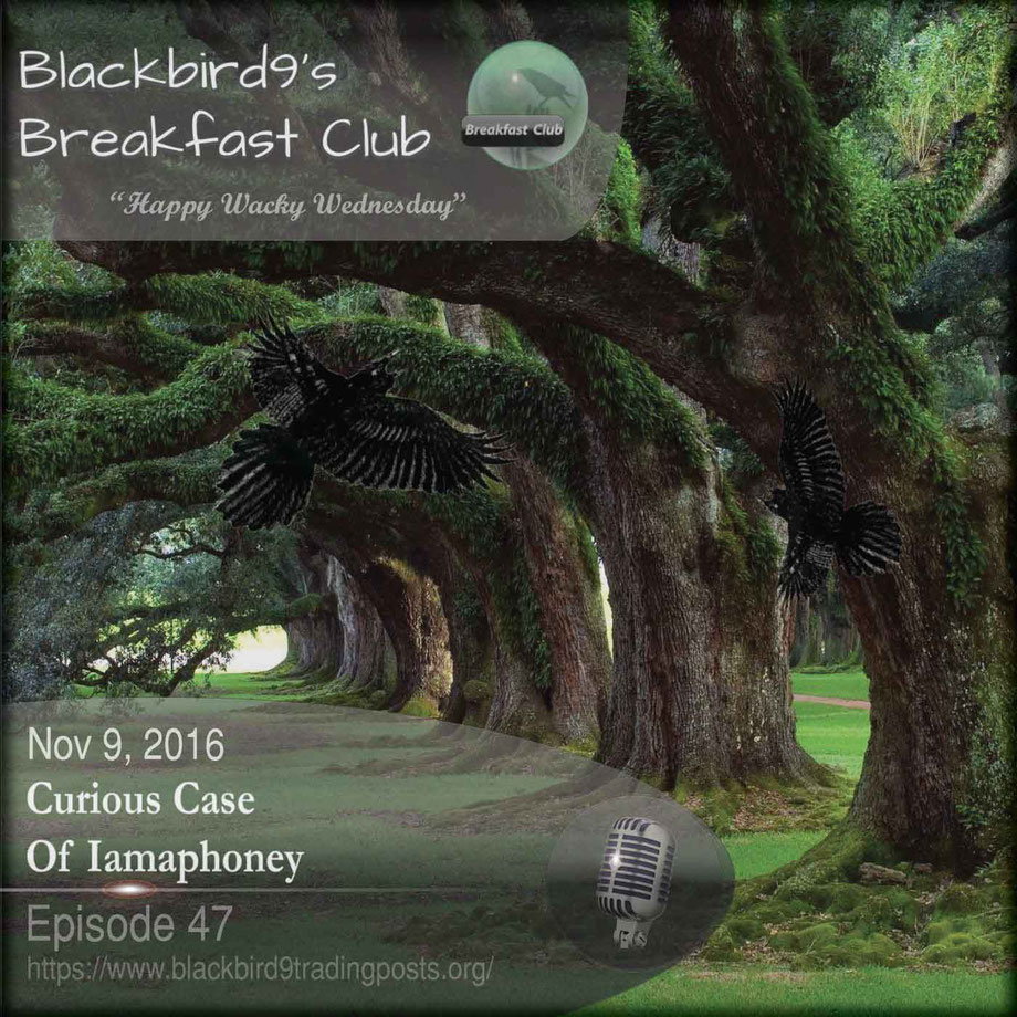 The Curious Case Of Iamaphoney - Blackbird9 Podcast