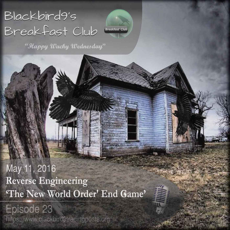 "Reverse Engineering ""The New World Order"" End Game - Blackbird9"