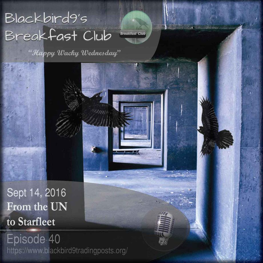 From The UN To Starfleet - Blackbird9