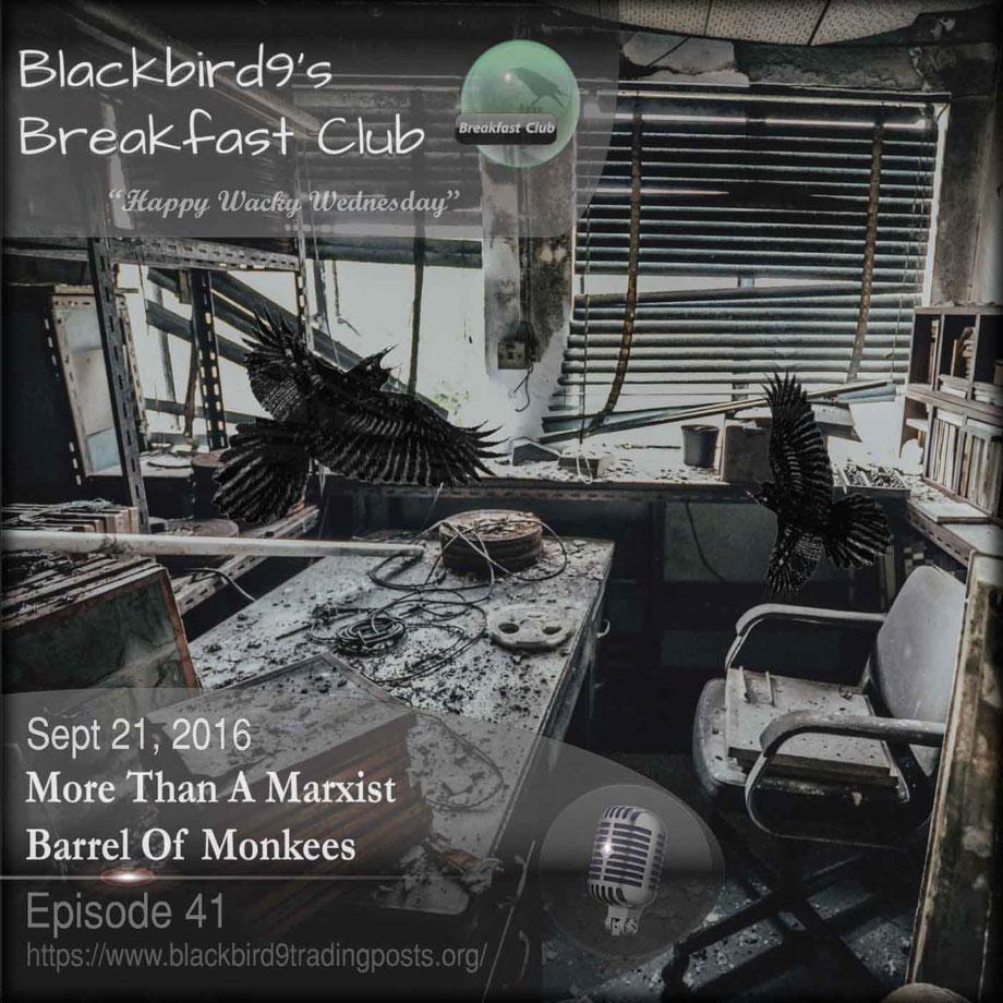 More Than A Marxist Barrel Of Monkees - Blackbird9