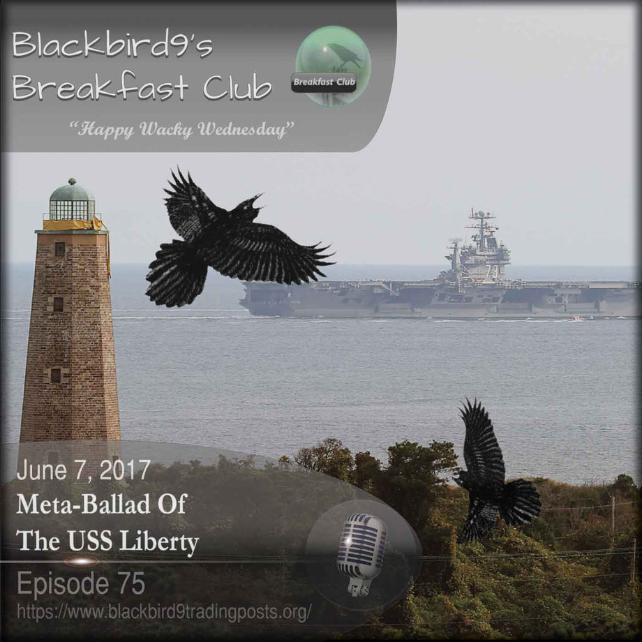 Meta-Ballad Of The USS Liberty - Blackbird9