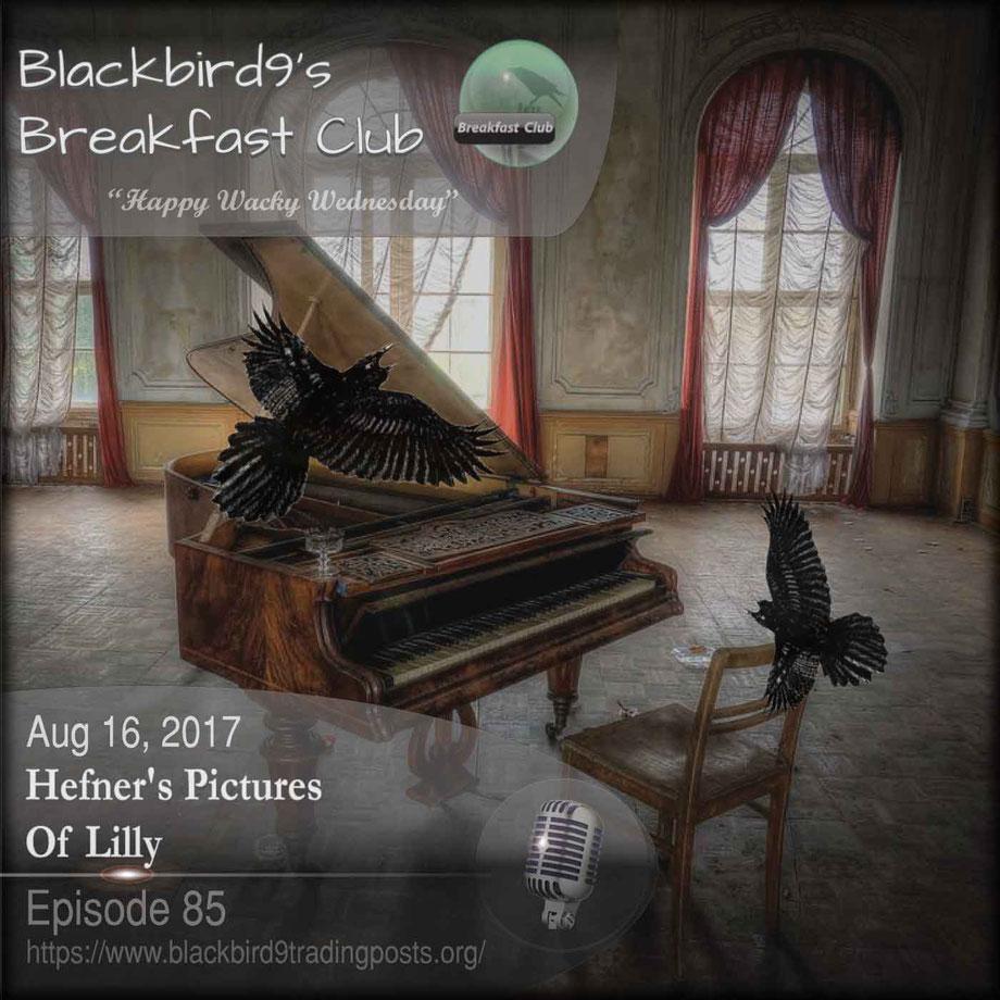 Hefner's Pictures Of Lilly - Blackbird9