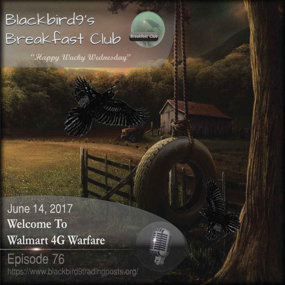 Welcome To Walmart 4G Warfare - Blackbird9