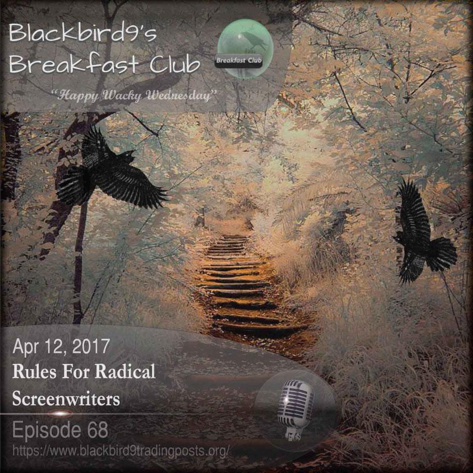 Rules For Radical Screenwriters  - Blackbird9