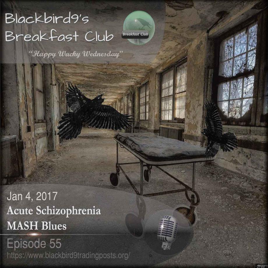 Acute Schizophrenia MASH Blues - Blackbird9 Podcast
