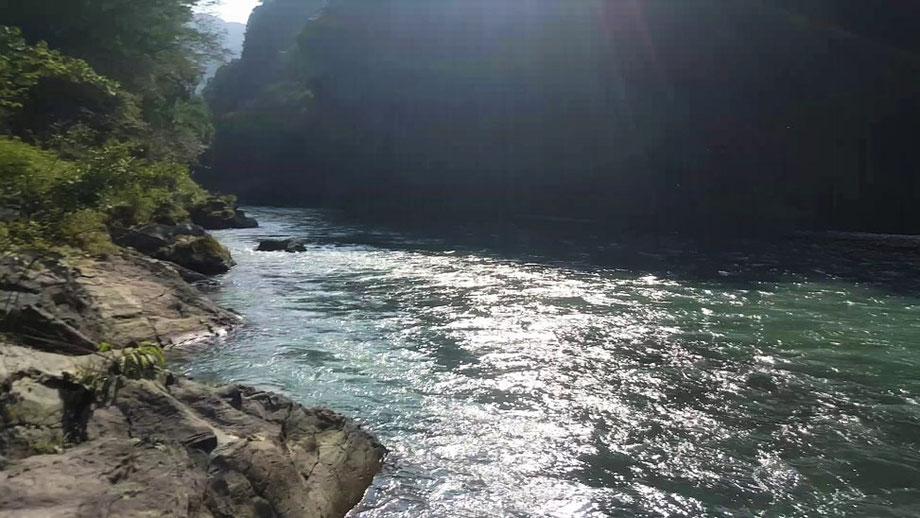 本流は、川幅もあり魚影も濃い。