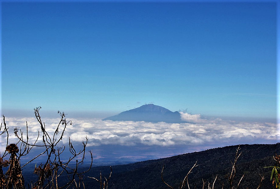 Mount Meru - Training for Mount Kilimanjaro