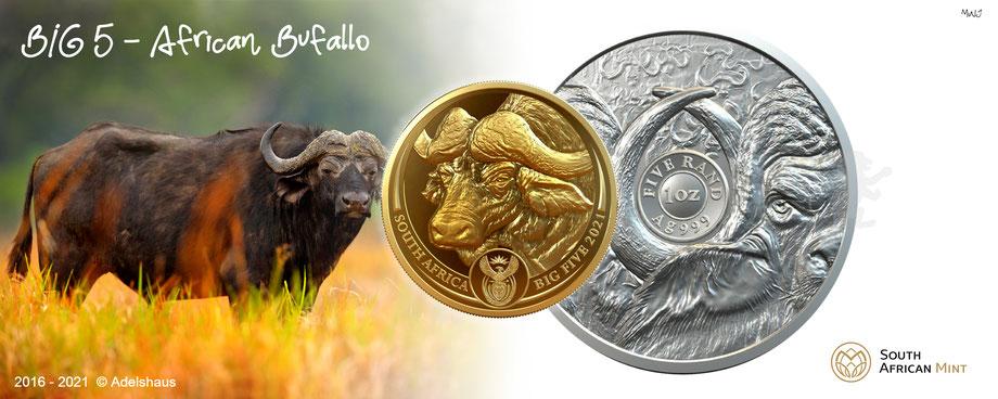 big five gold silber silver african buffalo 2021 münzen africa adelshaus