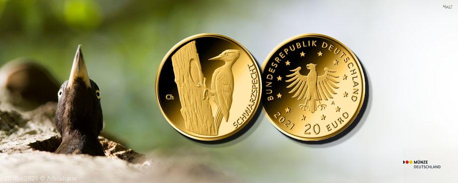 BRD Goldeuro  Serie Heimische Vögel Gold Goldmünzen Anlagegold kaufen Tegernsee Bad Wiessee Gold günstig kaufen  edelmetalle adelshaus