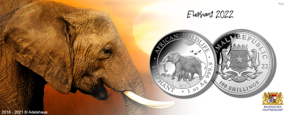 elefant somalia elephant leopard 2022 silber silbermünzen  anlagemünzen coins silver kaufen edelmetallen adelshaus adels-haus investment anlage