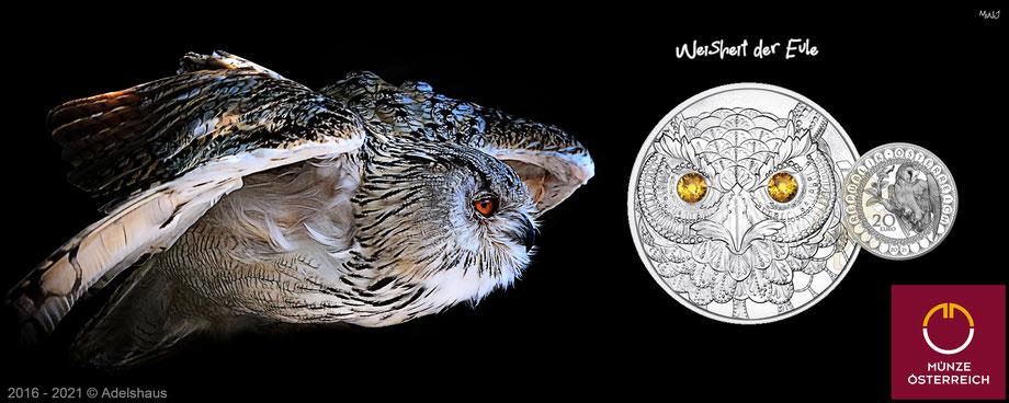 owl 2021, 20 euro eule 2021 silber, münze österreich, eule, die augen der Kontinente 2021, silbermünzen, euro, sammlermünzen