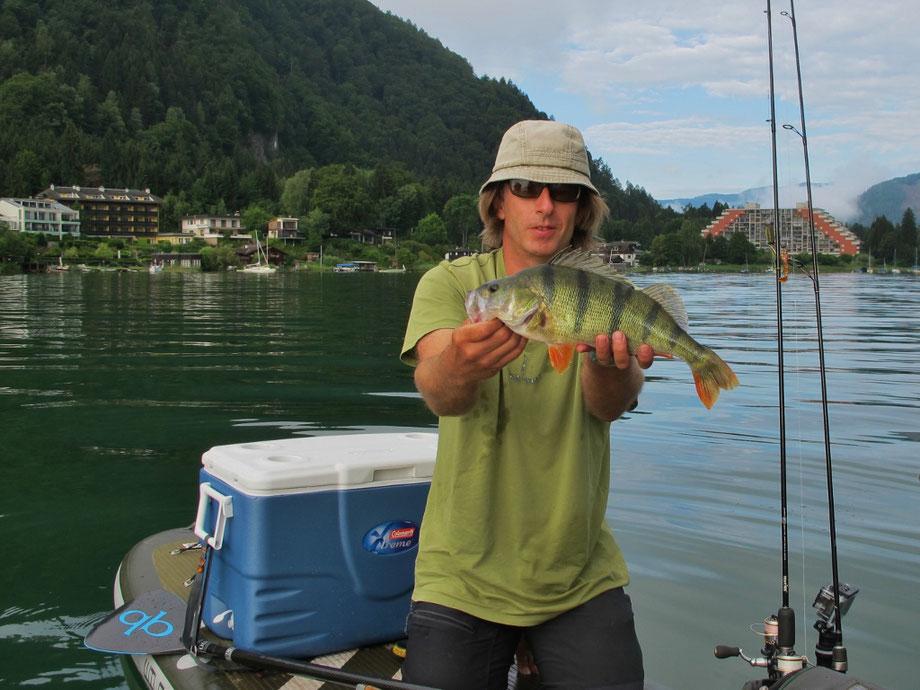 Barsch, SUP fishing, Kärnten, Österreich, Austria, europe, Europa, Guiding